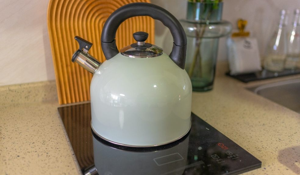 Kettles come out on top as the least clean kitchen item