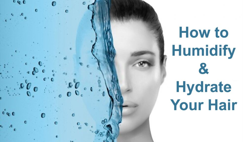 Humidify and Hydrate Your Hair