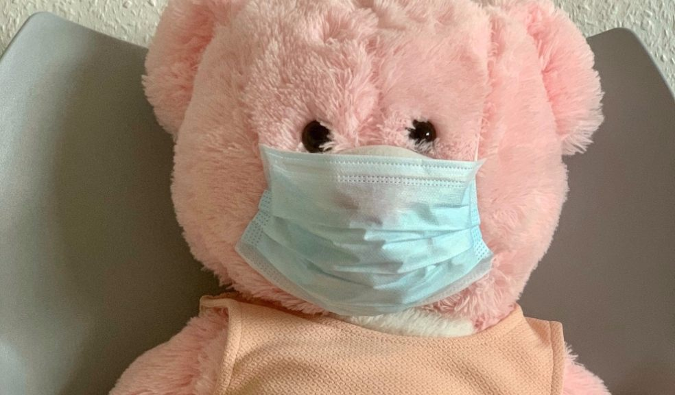 pink-teddybear-coronavirus-mask-health-lifestyle