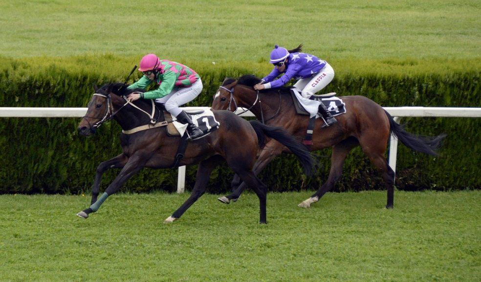 Online horse race betting uk liston trophy bettingadvice