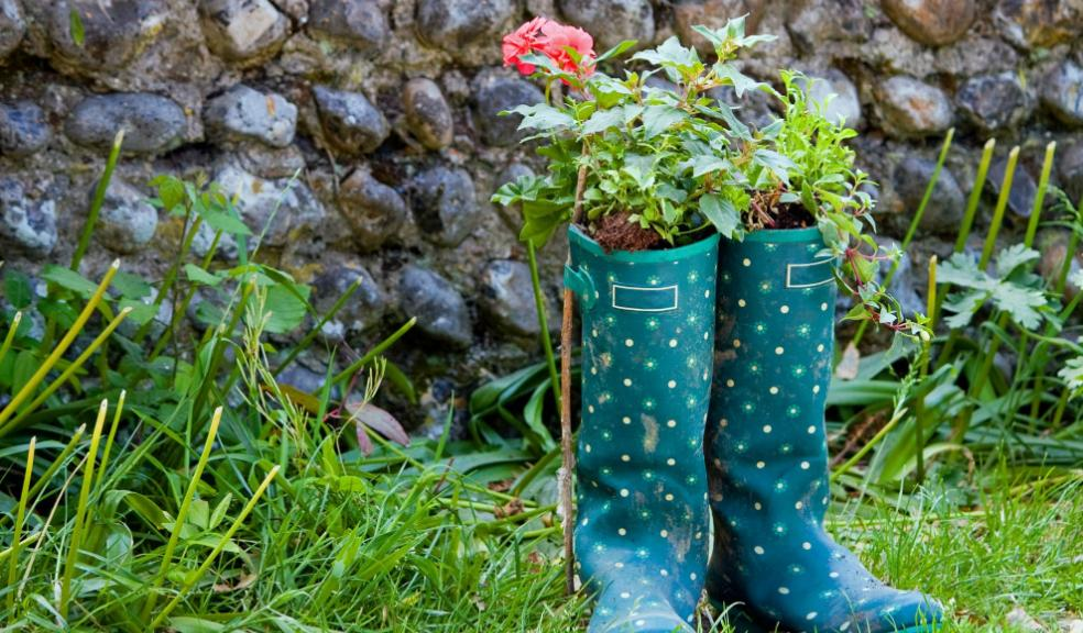 Plan and design a family garden with hints and tip from our friends at Homebase