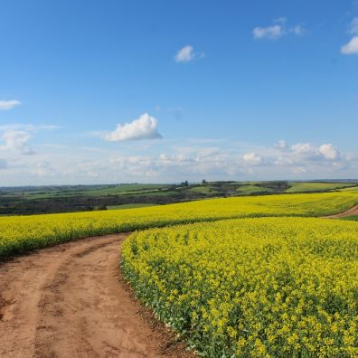 The pandemic has given people a greater appreciation of the landscapes farmers provide