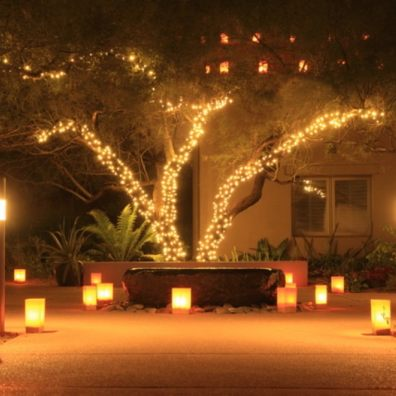 Consider lighting as a way of turning gardens into a haven
