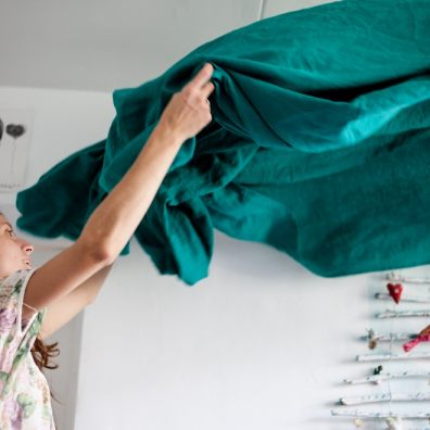 House moths and clothes moths feast on and live in household textiles