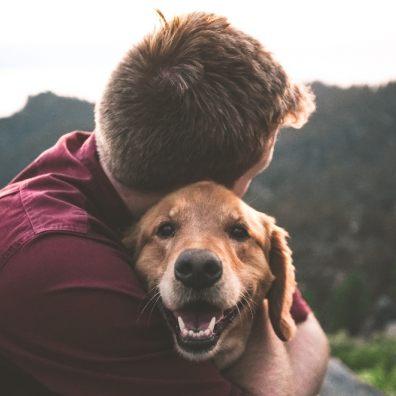 Leaving pets behindcan beheart-breaking