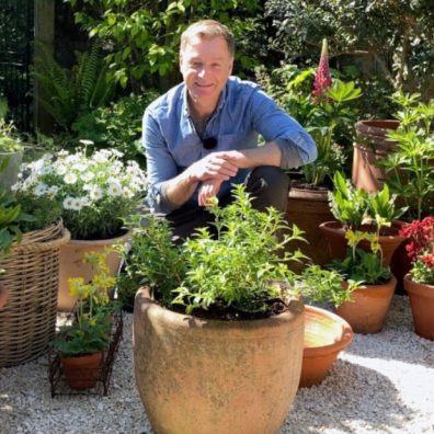 Plants for pots in garden