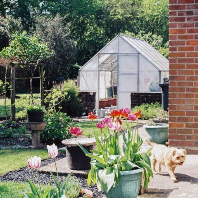 Top tips for sprucing up your garden